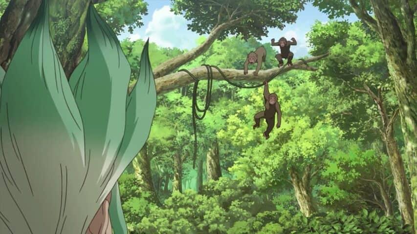 Dr. Stone cenário com macacos Senku olhando