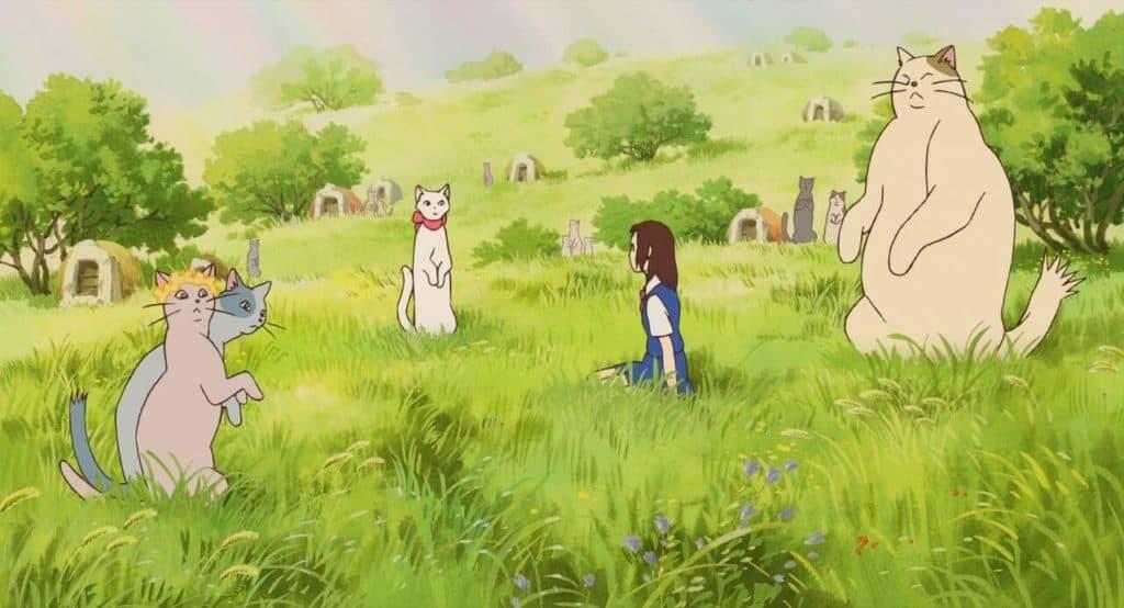 o reino dos gatos, com gatos cercando a haru