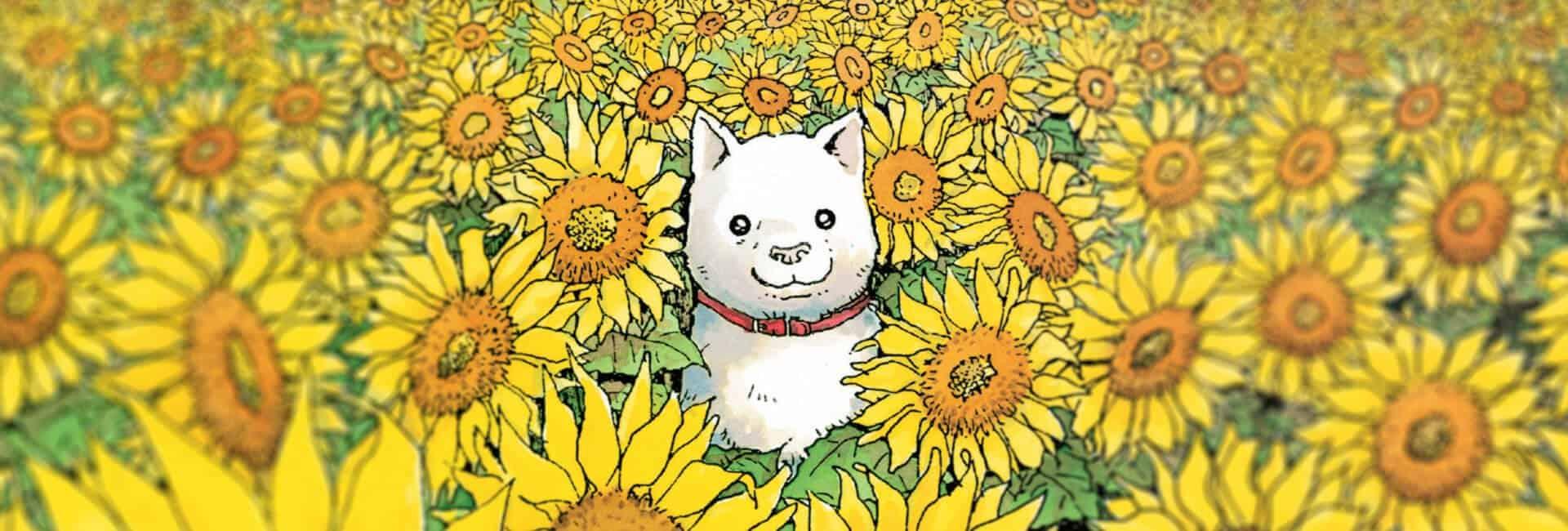 o cão protagonista da obra 'o cão que guarda as estrelas' no meio de uma plantação de gira-sóis