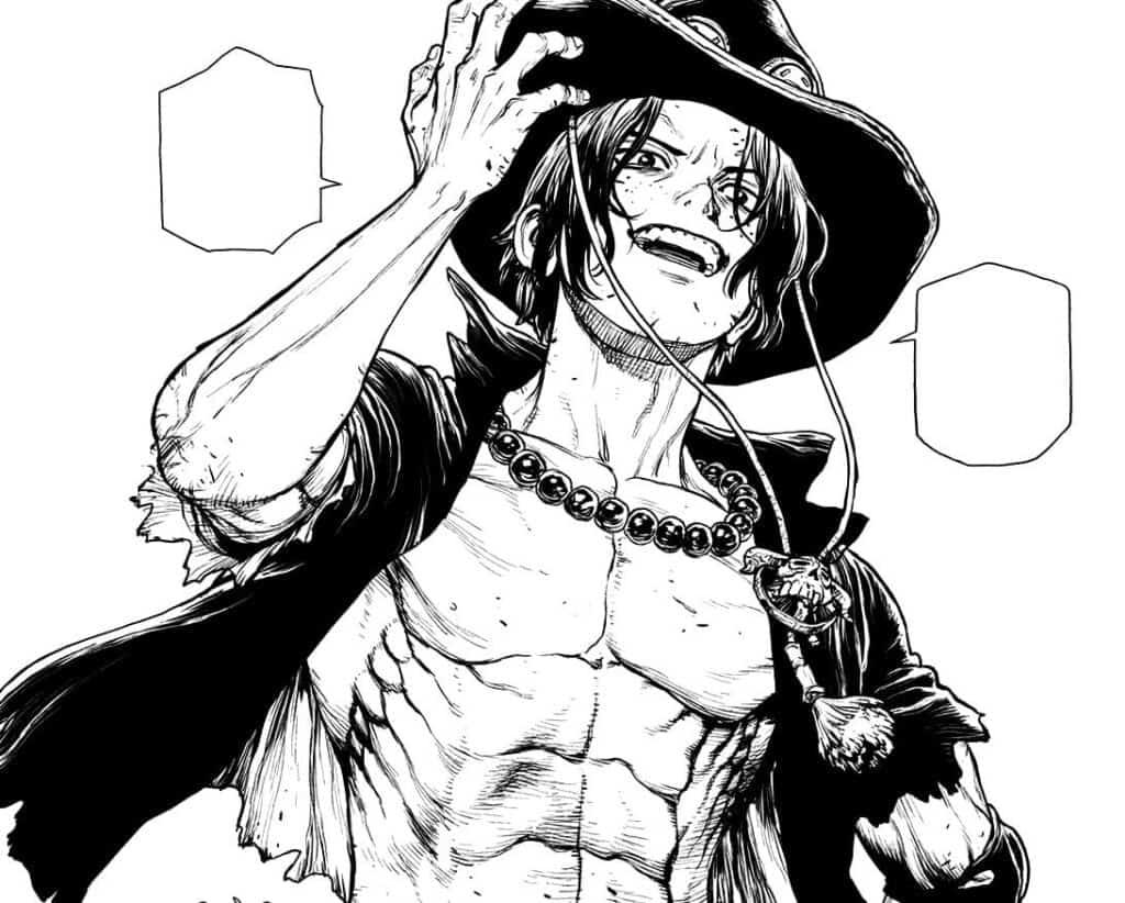 Ace segurando seu chapéu e sorrindo, novel do ace
