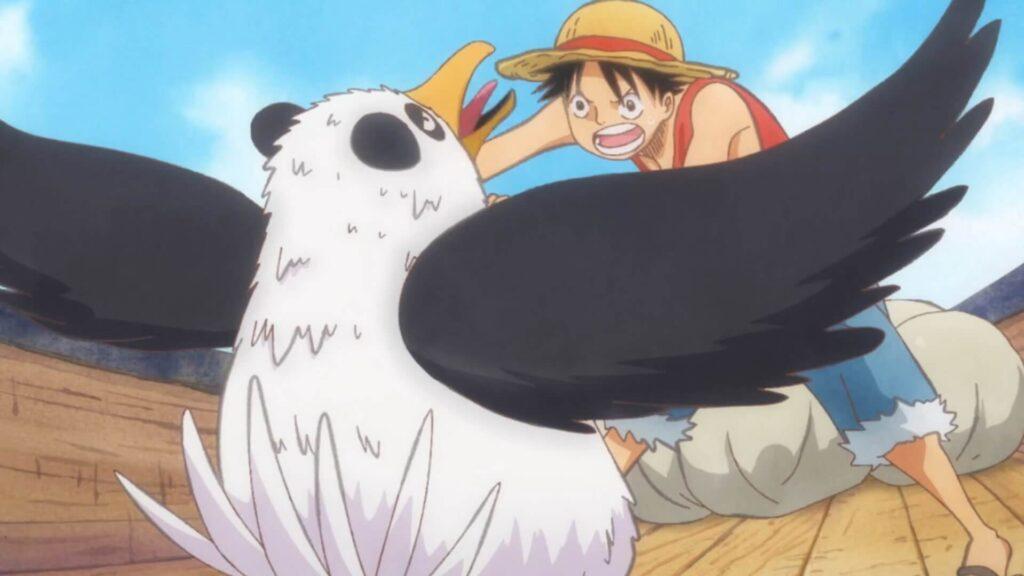 Luffy e um passarinho